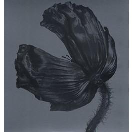 Pet Shop Boys Release 180Gr LP