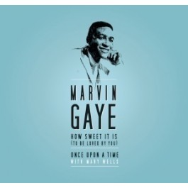 Marvin Gaye Volume One 1961-1965 LP7