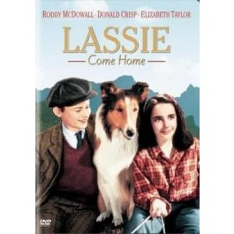 Fred M Wilcox Lassie Se Vraća Kući DVD