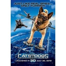 Brad Peyton O Mačkama I Psima DVD