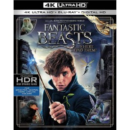 David Yates Čudesne Zvijeri I Gdje Ih Naći BLU-RAY 4K ULTRA HD