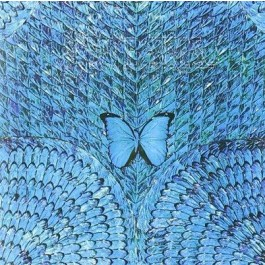 Santana Borboletta CD