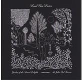 Dead Can Dance Garden Of The Arcane Delights LP2