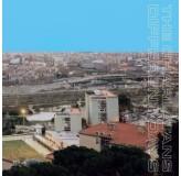 Charlatans Different Days LP