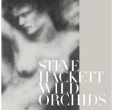 Steve Hackett Wild Orchids Re-Issue 2013 CD