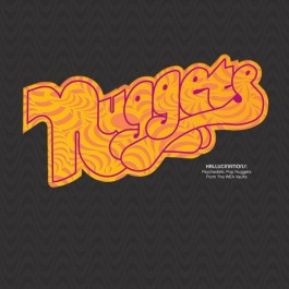 Various Artists Nuggets Hallucinations LP2