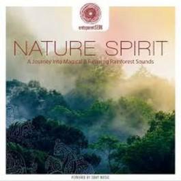 Jens Buchert Nature Spirit CD