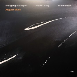 Wolfgang Muthspiel Scott Colley Brian Blade Angular Blues CD