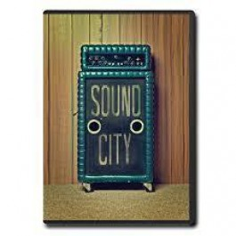 Dave Grohl Sound City DVD