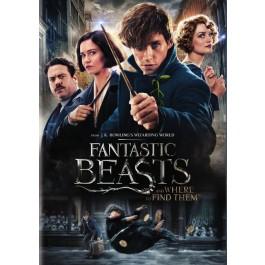 David Yates Čudesne Zvijeri Grindelwaldova Zlodjela DVD