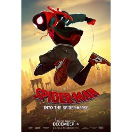 Bob Persichetti Peter Ramsey Spider-Man Novi Svijet DVD