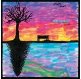 Stereophonics Kind LP