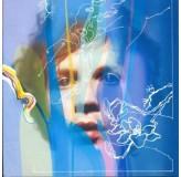 Beck Sea Change CD
