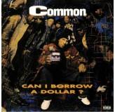 Common Can I Borrow A Dollar Transparent Vinyl LP